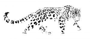 leapard-logo